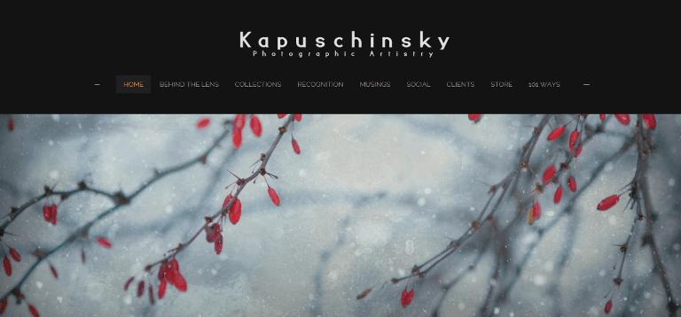 Kapuschinsky Photographic Artisty