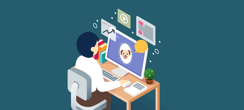 Online pet store website development