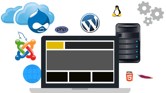 Web Scraping Services Why To Work With Us