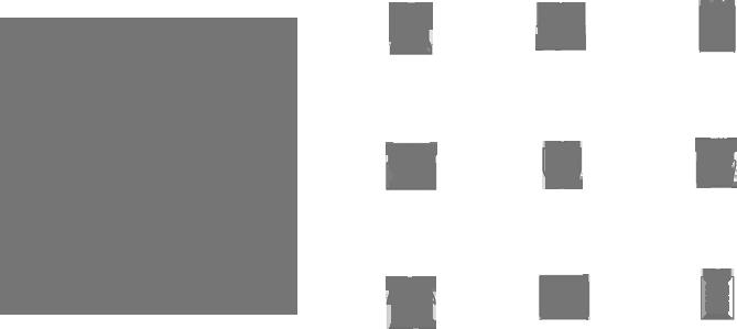 QIM Case Study Using Icon